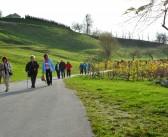 Srečanje za sodelavce po Slomškovi romarski poti