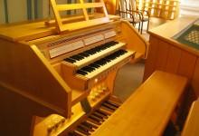 orglarska-sola-orgle-1