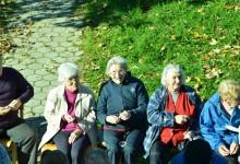 varstvo-starejsih-kostanjev-piknik-13-10