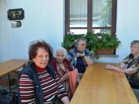 varstvo-starejsih-romanje-petrovce-2014-14