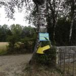 """Buen camino - romarski pozdrav - """"dobro potovanje!"""""""