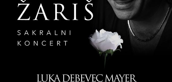 Koncert Luka Debevec